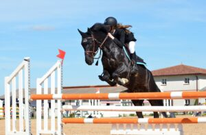 progresser en équitation