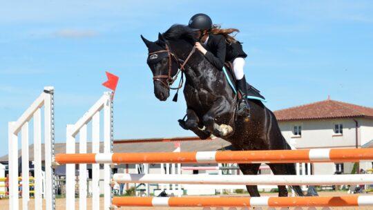 Equitation: les erreurs à éviter pour bien progresser